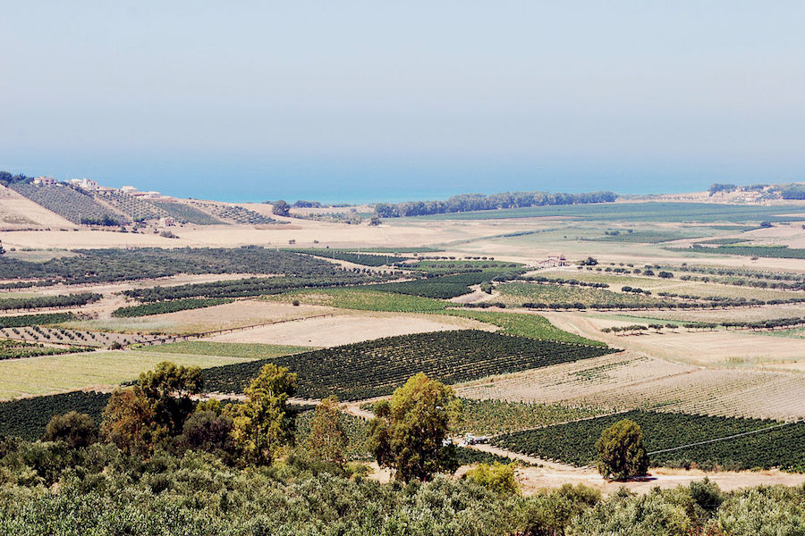 Belice Valley - Sicily