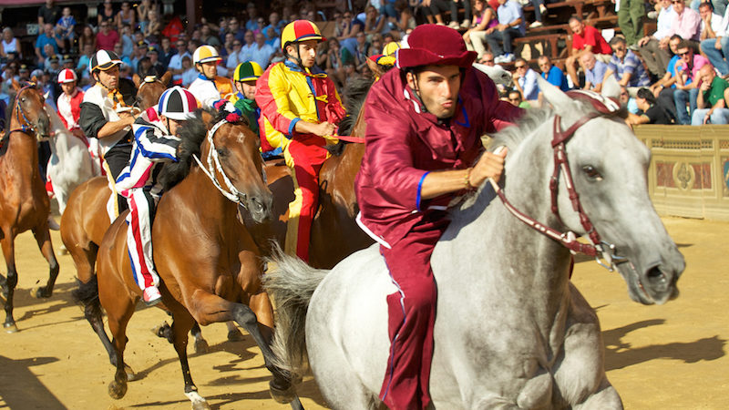 Palio di Siena facts: horse race